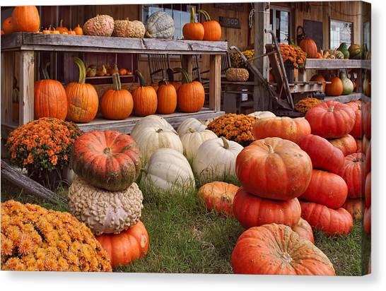 Fall Pumpkins And Gourds Canvas Print