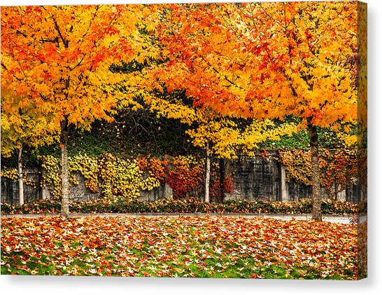 Autumnl Rainbow Canvas Print