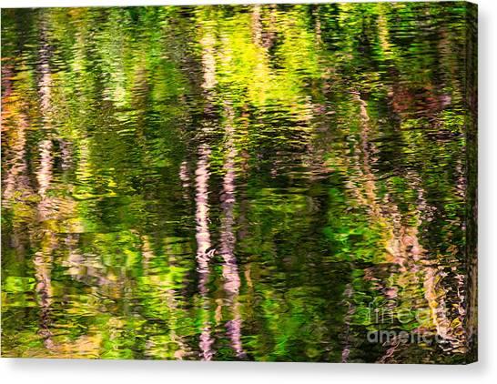 The Harz National Park Canvas Print