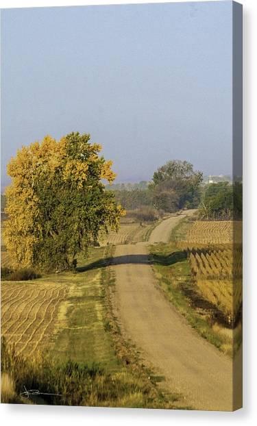 Fall Road Canvas Print