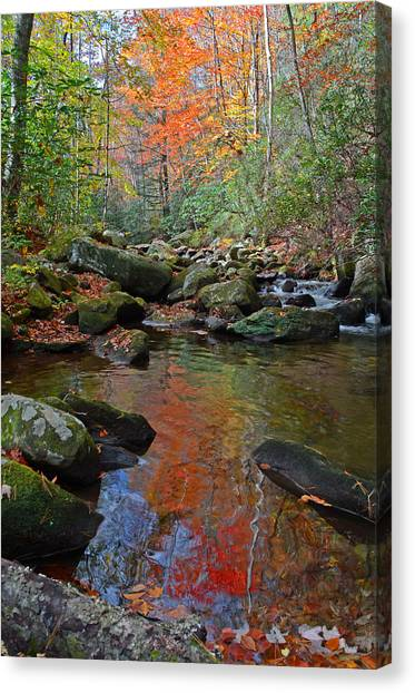Fall Tranquility On The Middle Saluda River Canvas Print by Mary Anne Baker