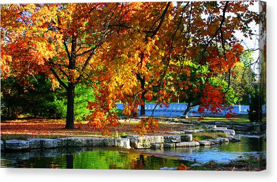 Fall Trees Landscape Stream Canvas Print