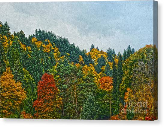 Fall Trees Canvas Print by Nur Roy