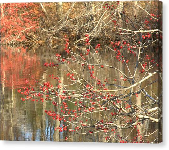Fall Upon The Water Canvas Print