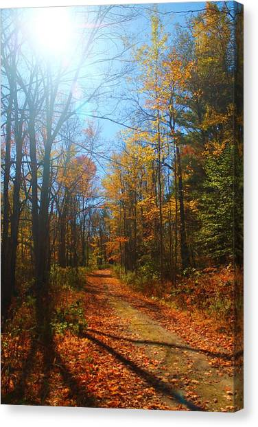 Fall Vermont Road Canvas Print