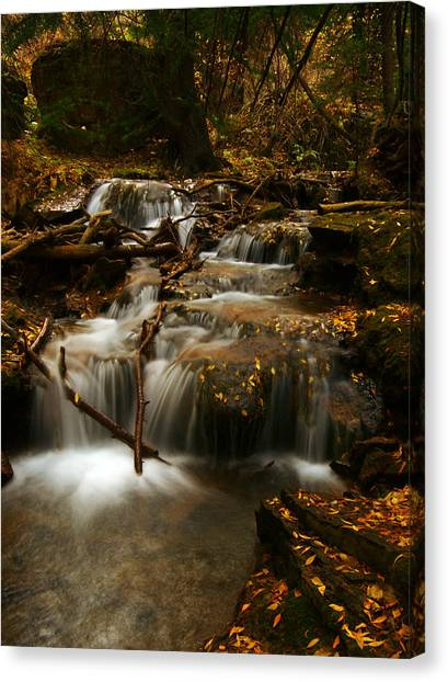 Fall With Grace Canvas Print