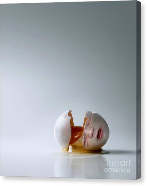 Abortion Canvas Print - Fallen Egg by Diane Diederich