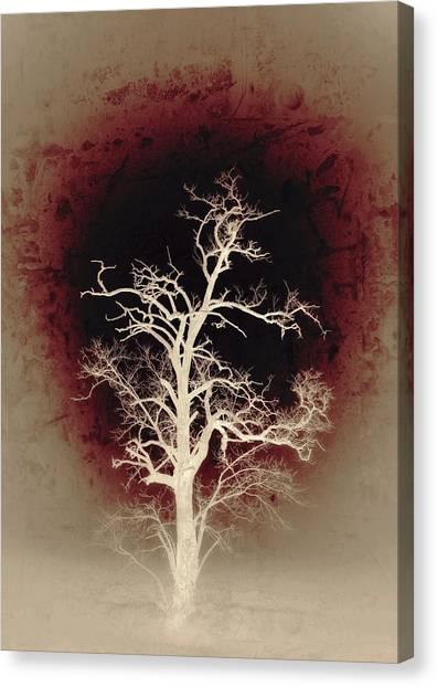 Falling Deeper... Canvas Print