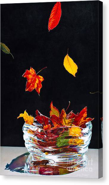 Falling Into Place Canvas Print by Arlene Steinberg