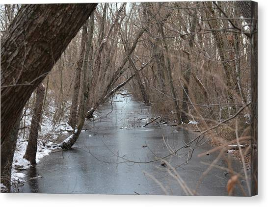 Falling Trees On A Frozen Canal Canvas Print by Bill Helman
