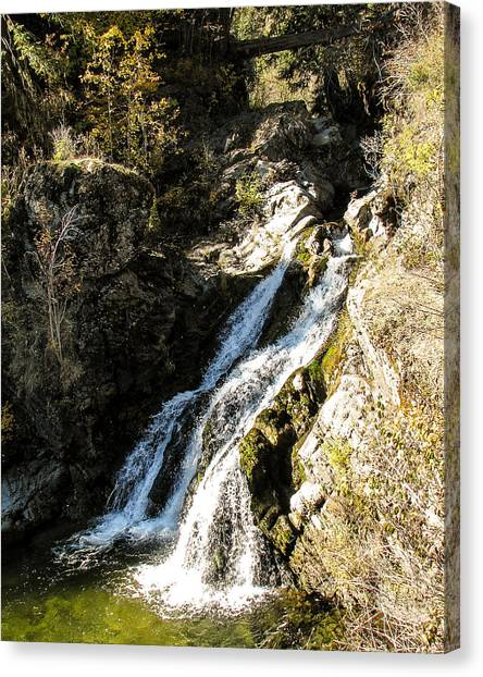 Falling Water Canvas Print by Curtis Stein