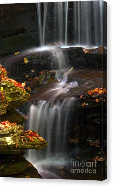 Falls And Fall Leaves Canvas Print