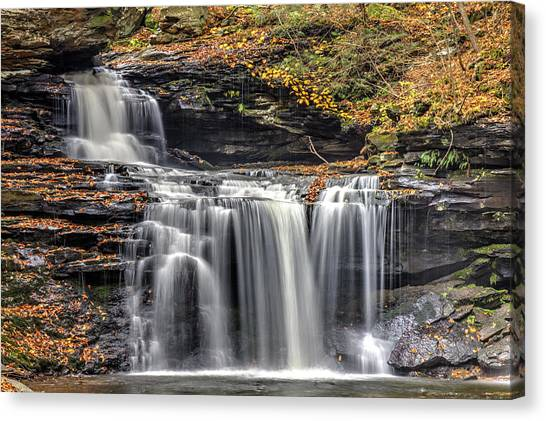 Falls At Ricketts Glen Canvas Print by Zev Steinhardt