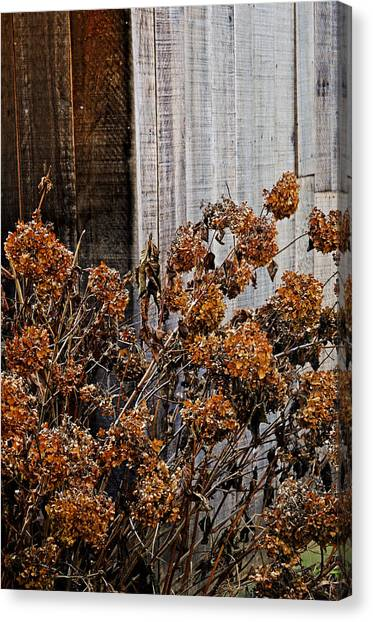 Fall's Fleeting Memories Canvas Print