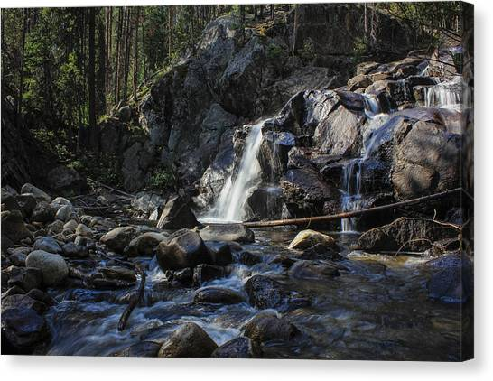 Falls In The Forest Canvas Print