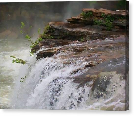 Falls Of Alabama Canvas Print