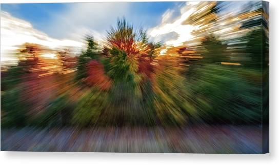 Falls Rush Canvas Print