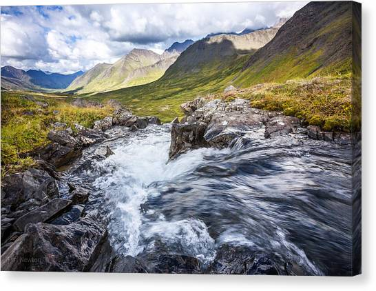 Falls With A View Canvas Print