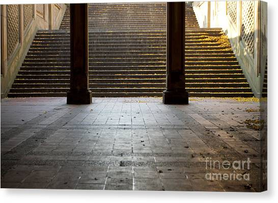 Familiar Steps Canvas Print