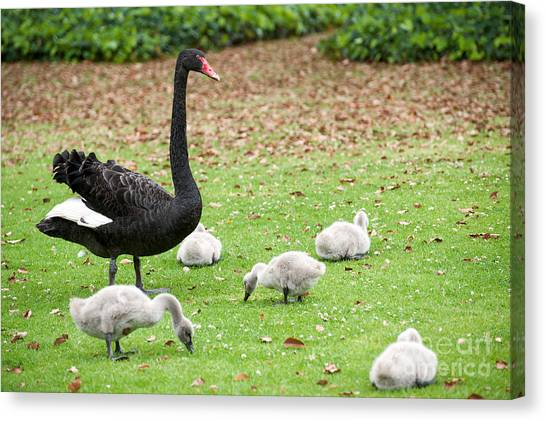 Family Of Six Canvas Print