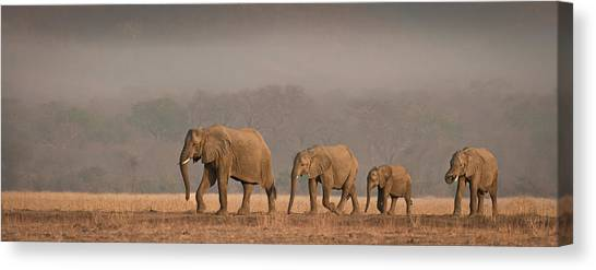 Big Sister Canvas Print - Family Outing by Peter O'hara