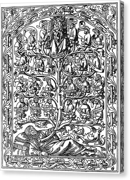 1506 Canvas Print - Family Tree, 1506 by Granger