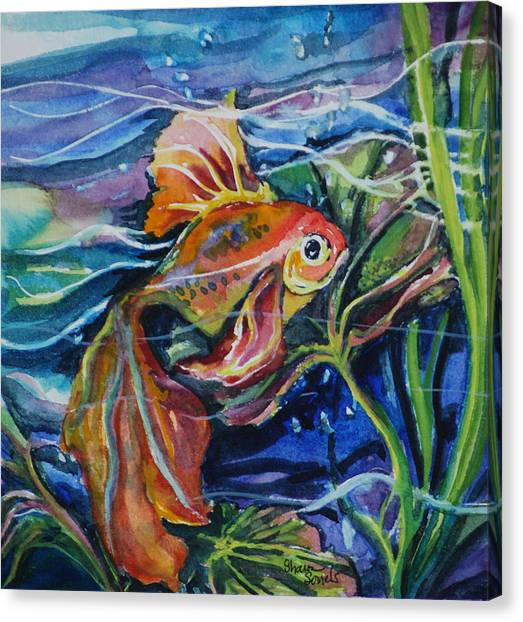 Fanciful Fish Canvas Print