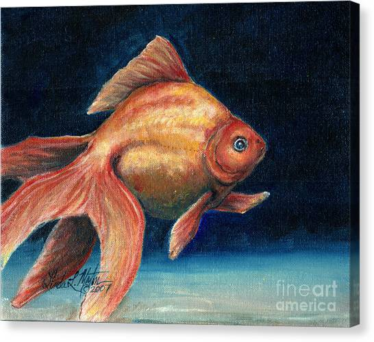 Fancy Goldfish Canvas Print
