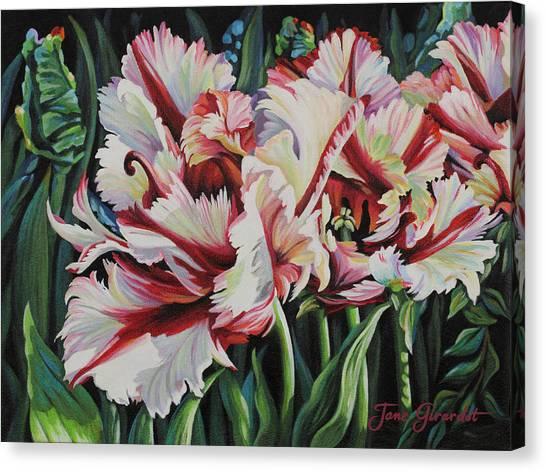 Fancy Parrot Tulips Canvas Print