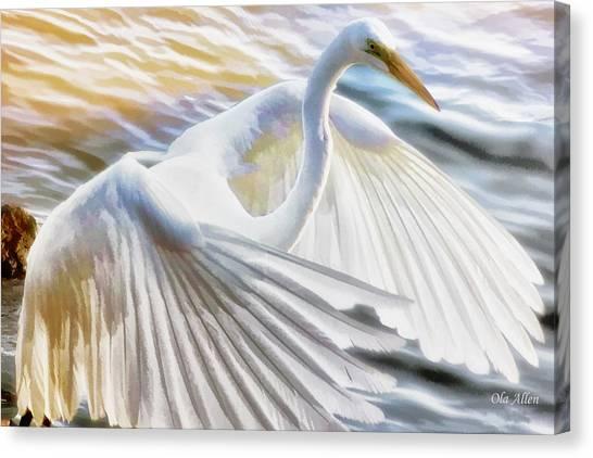 Fancy Wing Dancer  Canvas Print