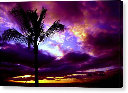 Fantastic Colors Canvas Print