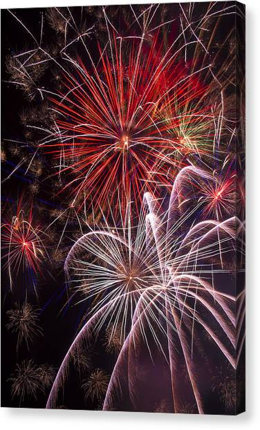 Pyrotechnic Canvas Print - Fantastic Fireworks by Garry Gay