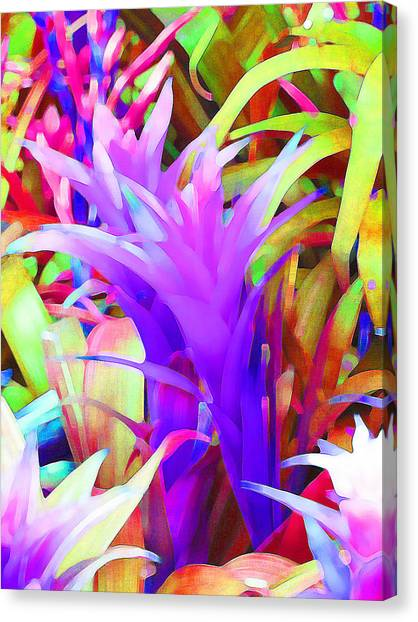 Fantasy Bromeliad Abstract Canvas Print