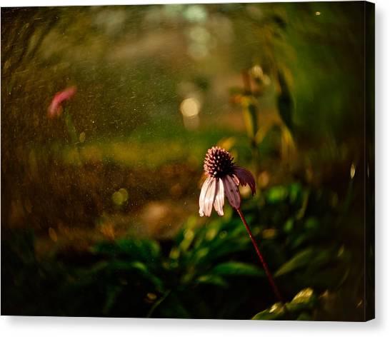 Rain Canvas Print - Fantasy Flowers by Linda Unger