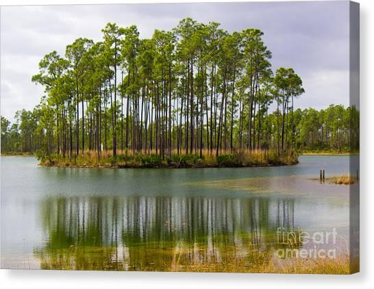 Fantasy Island In The Florida Everglades Canvas Print