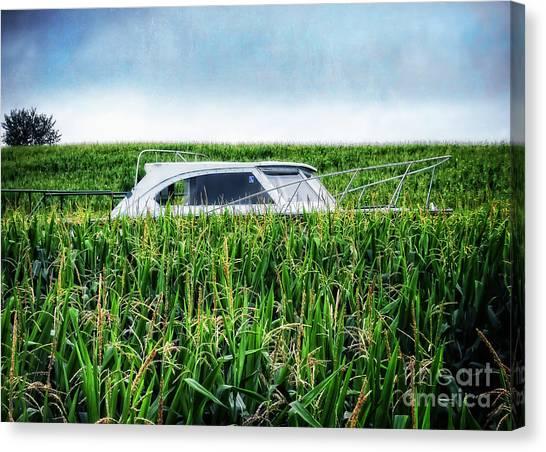 Corn Maze Canvas Print - Far Afield by Edward Fielding