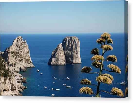 Faraglioni In Capri Canvas Print