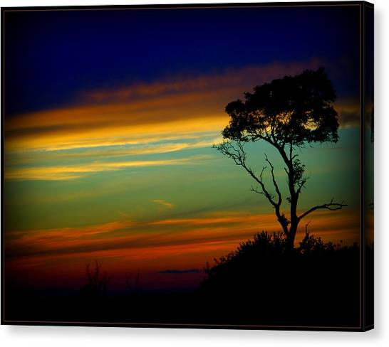 Farewell Sweet Sun Canvas Print