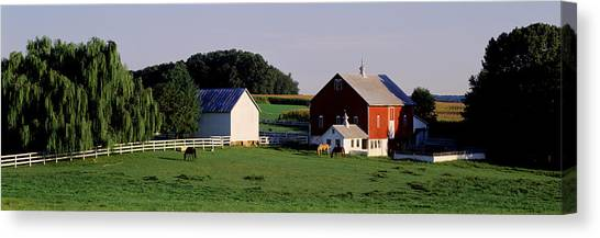 Maryland Horses Canvas Print - Farm, Baltimore County, Maryland, Usa by Panoramic Images