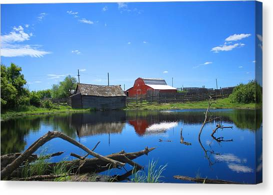 Farm Buildings And Pond. Canvas Print