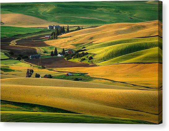 Farm Life Canvas Print
