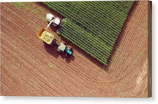 Farm Machines Harvesting Corn For Feed Or Ethanol Canvas Print by JamesBrey