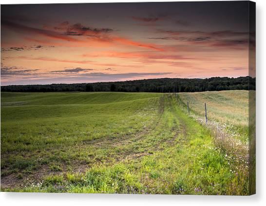Farm Road Dawn Canvas Print
