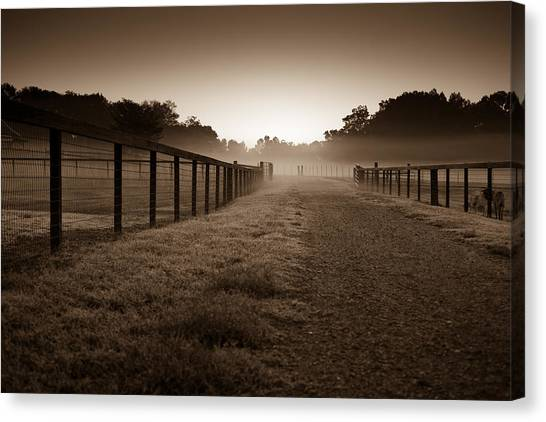 Farm Road Canvas Print