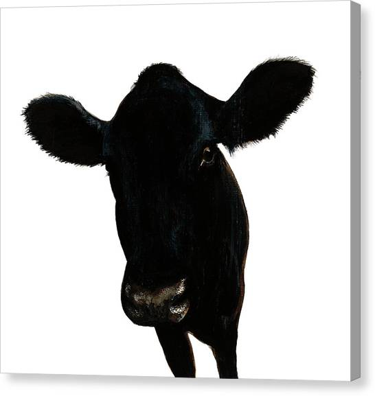 Cow Farms Canvas Print - Farm Team IIi No Background by Patsy Ducklow