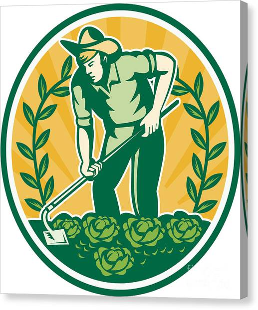 Cabbage Canvas Print - Farmer Gardener With Garden Hoe Cabbage by Aloysius Patrimonio
