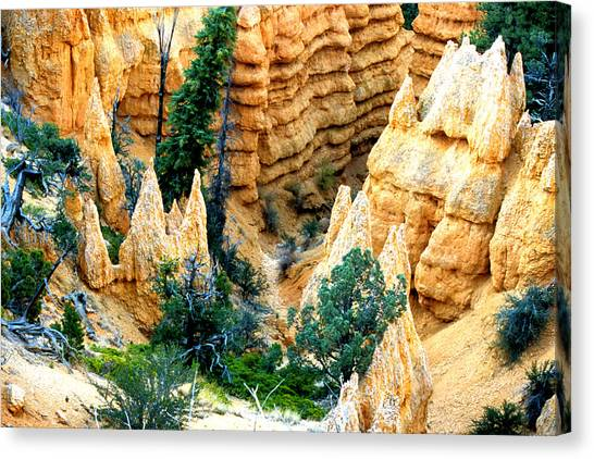 Faryland Canyon Bryce Canyon National Monument Canvas Print