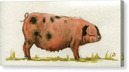 Farm Animals Canvas Print - Faty Sow by Juan  Bosco