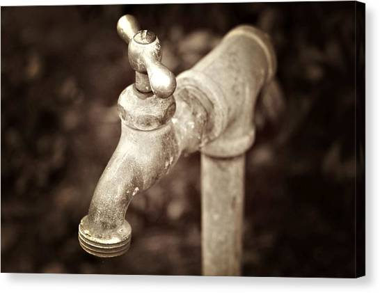 Faucet In Fall Canvas Print by Cathie Tyler