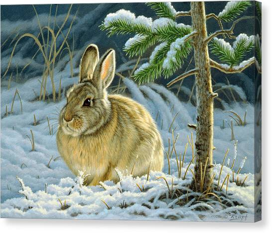 Rabbits Canvas Print - Favorite Place - Bunny by Paul Krapf